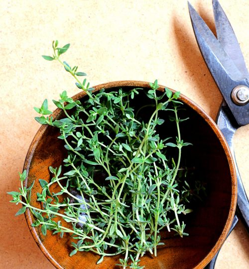 fresh-thyme-and-kitchen-scissors
