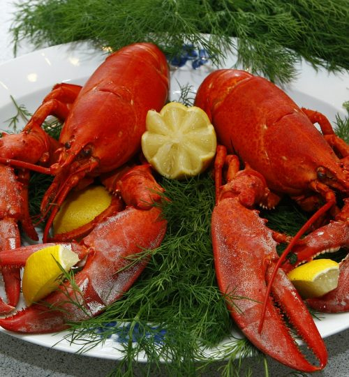lobster, cooked, danish